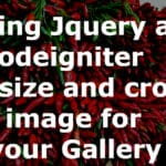 crop image using jquery and CodeIgniter