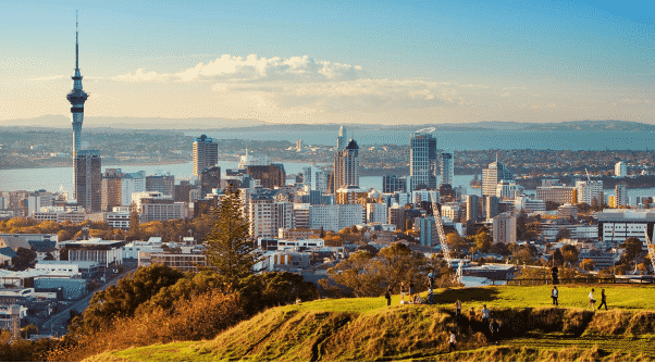New Zealand Networking
